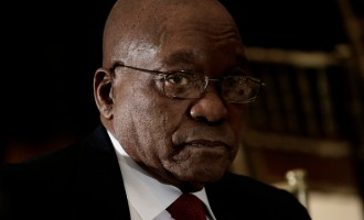 South Africa Challenges Zuma's Presidency