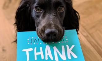 James River Capital Shares 10 Employee Appreciation Ideas for 2021