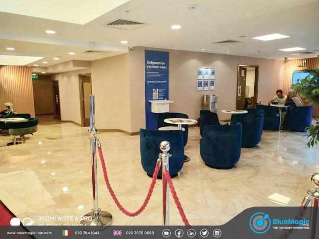 """With a Team of Internationally Acclaimed Professionals, BlueMagic Group Promises a """"Magical Experience"""" to Its Clients"""
