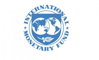 International Monetary Fund company logo