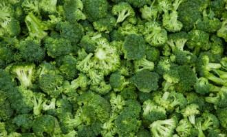 Commercial Vegetable Production At Monliz-Produtos Alimentares do Mondego e Liz SA Plant